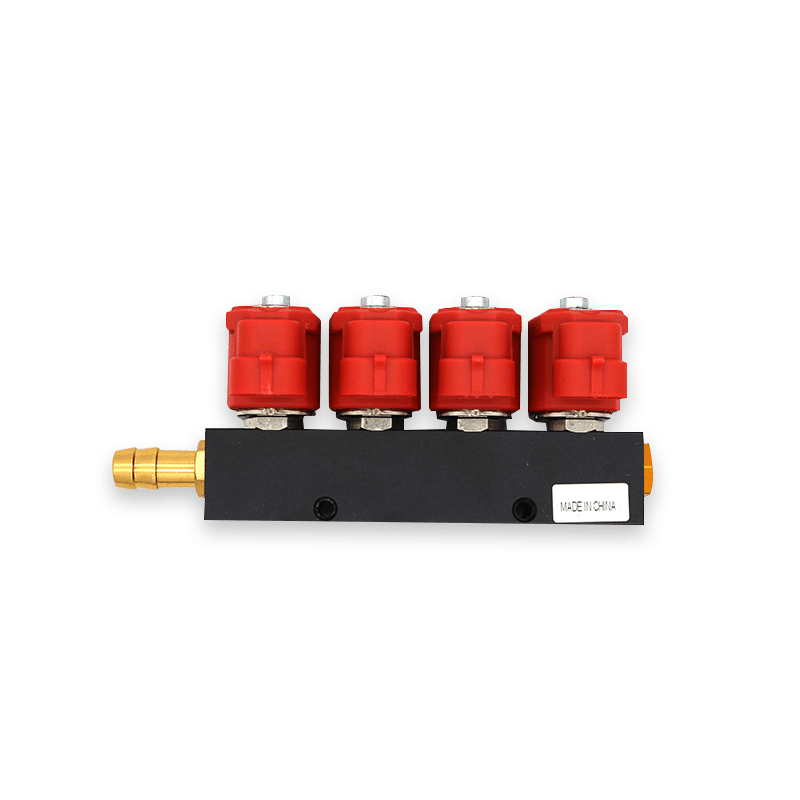 3-Ohm 4-cylinder CNG Rail Injector for Autogas Conversion Kit