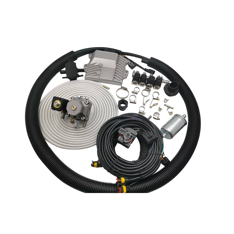 CNG Multipoint sequential injection system kits